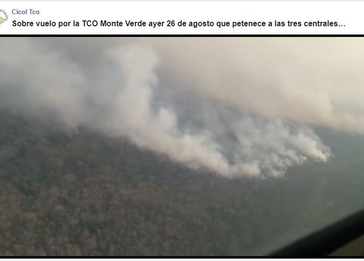 SOSBolivia_screenshot-video-Monteverde.JPG