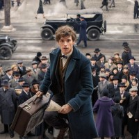 14/08/2019- Fantastic beasts and where to find them- Alken